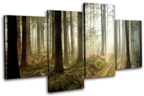 Woodland Forest Landscapes - 13-0767(00B)-MP04-LO